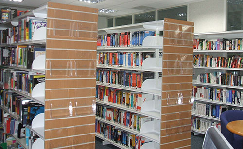 Microsoft Reading Book Shelves
